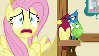 "Fluttershy ""WHEN something scary"" S5E21"