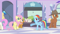Rainbow Dash there isn't S3E12.png