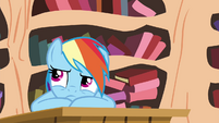 Rainbow not happy S4E21