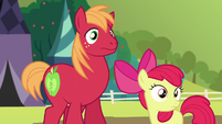 Apple Bloom and Big Mac left behind S5E17