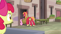 Sugar Belle and Big Mac enter Sugar Belle's house S7E8