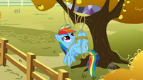 Rainbow Dash tangled in rope S01E13
