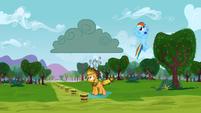 Rainbow Dash whistling innocently S3E8