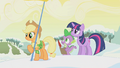 Applejack holds a flag S1E11.png