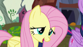 Fluttershy shyly introducing herself S5E23.png