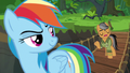 """Quibble """"if this were really a real Daring Do adventure"""" S6E13.png"""