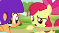 "Apple Bloom ""wonderin' if this is the best way"" S7E7.png"