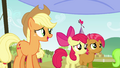 Applejack 'where you go on to the next leg of the race' S3E08.png