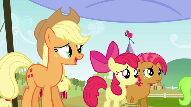 File:Applejack 'where you go on to the next leg of the race' S3E08.png