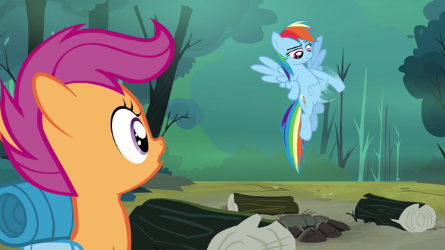 File:Rainbow brushing off dust S3E6.png