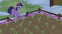 Twilight magically growing Yakyakistan plants S7E11
