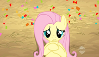 Fluttershy was startled S2E14
