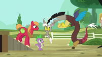 Discord appears in front of Spike and Big Mac S6E17