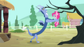 Discord putting Pinkie hanging on a branch S4E11.png