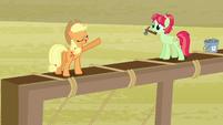 Raise This Barn - Applejack and Apple Dumpling S3E8