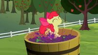 Apple Bloom stomping on grapes S2E05