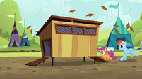 Rainbow and Scootaloo run into chicken coop S5E17