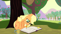 Applejack writes on a journal S4E20