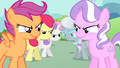 CMC stare down Tiara and Spoon S4E05.png