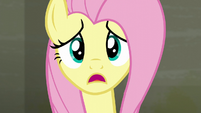 """Fluttershy """"I asked the raccoons to leave"""" S6E9"""