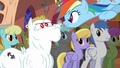 Rainbow with bulked-up pegasus S2E22.png