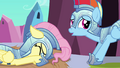 Fluttershy whimpers S3E02.png