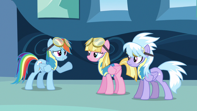 File:Rainbow Dash asking for wingpony S3E7.png