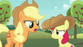 "Applejack ""you don't need a fancy scarf"" S7E9.png"