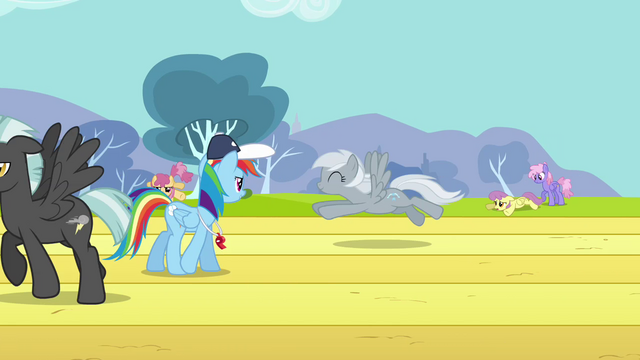 File:Rainbow Dash watching over training S2E22.png