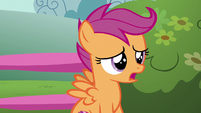 "Scootaloo ""we can just forget about"" S6E19"