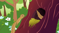 Squirrels going back into the tree S1E23
