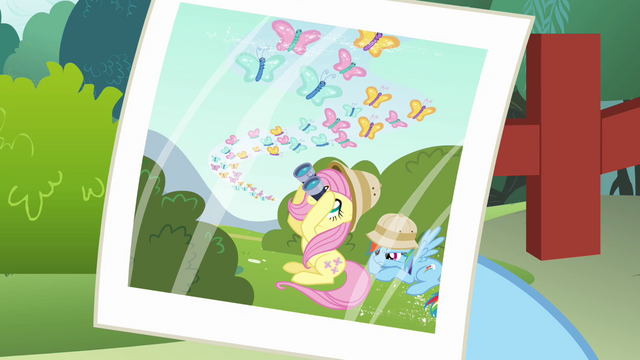 File:Butterfly migration photo S2E21.png