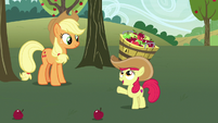 "Apple Bloom ""that is a lot better!"" S7E9"