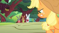 Applejack angry at varmints S1E23