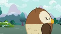 Owl spinning head S2E07