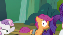 Scootaloo becomes the puller S3E06