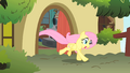 Fluttershy running after Philomena S01E22.png