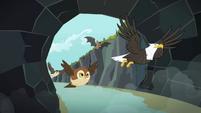 The animals enter the cave S2E07
