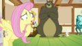 Fluttershy pointing to the windows S5E21.png