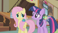 Fluttershy and Twilight Sparkle confused S1E10.png