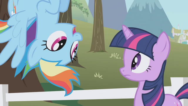 File:Rainbow Dash asks about the extra ticket S1E3.png