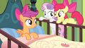 "Apple Bloom ""It is!"" S4E17.png"