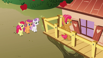 CMC notices Babs on the clubhouse S3E04