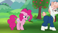 Svengallop walking away from Pinkie Pie S5E24.png
