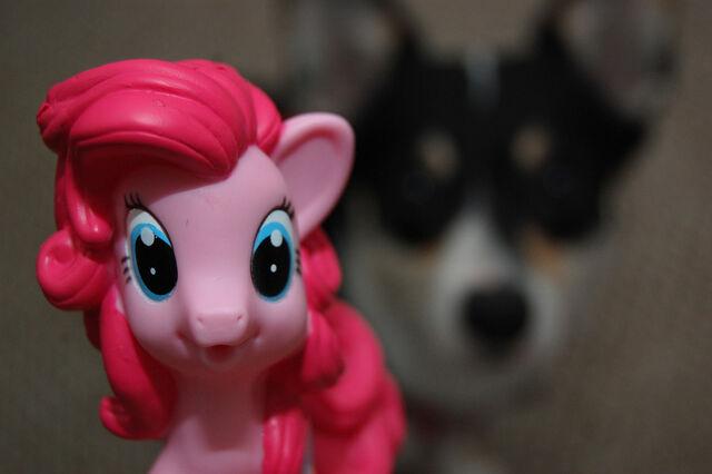 File:Pinkie Pie Carly H.jpg