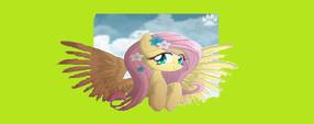 Fluttershy by Rainbowdashy