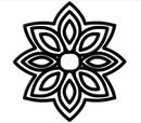 פרח רוזטה
