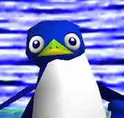 4D Penguin