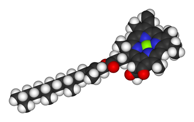 File:800px-Chlorophyll-a-3D-vdW.png