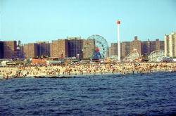 File:ConeyIsland.png